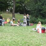 Picknick, Sommerfest 2017 Frankfurt