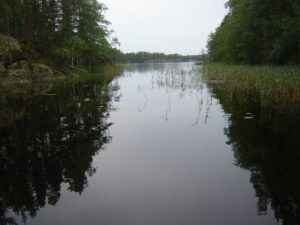 Seenlandschaft im Linnansaari Nationalpark