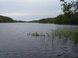 Seengebiet im Linnansaari Nationalpark