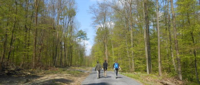 Wandern am Schiffenberg