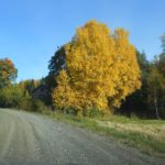 Herbst in Pälkäne