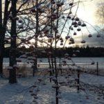 Winter in Rantasalmi