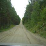 Waldweg bei Puumala